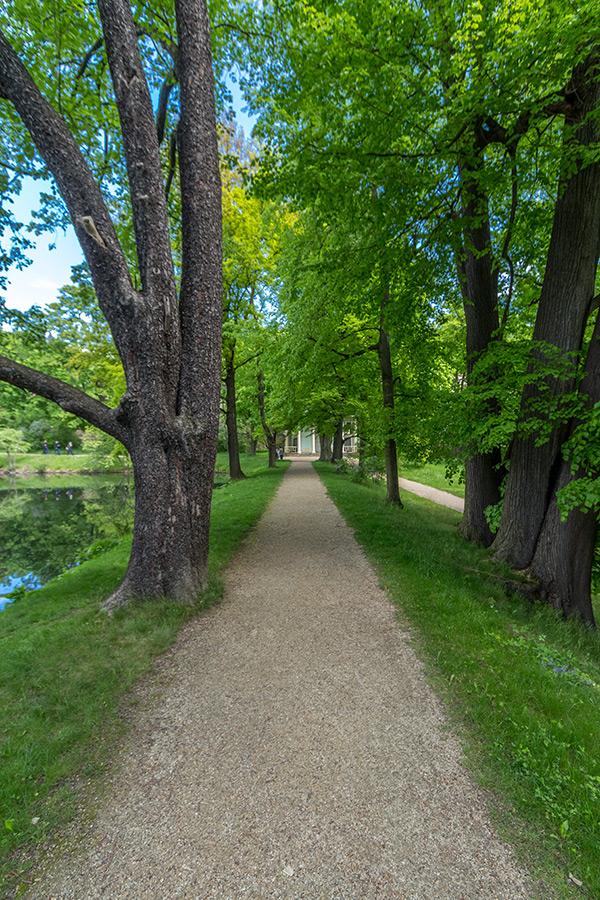 Kotyrba Architekturfotografie Dresden   Chinesischer Garten, Park Pillnitz