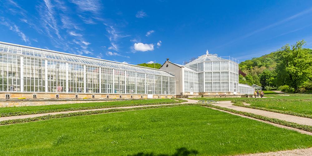 Kotyrba Architekturfotografie Dresden   Schloss Pillnitz, Palmenhaus