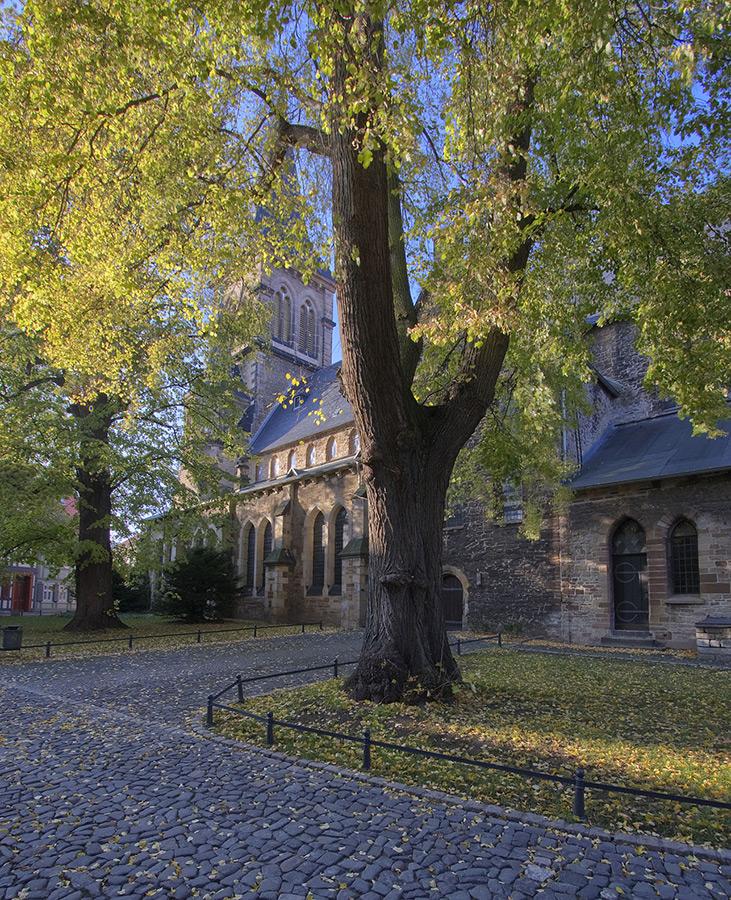 Wernigerode, St. Silvestri
