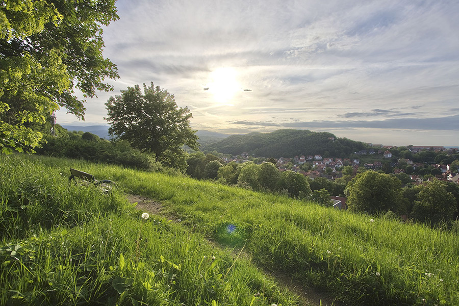 Wernigerpde, Hermann-Löns-Weg