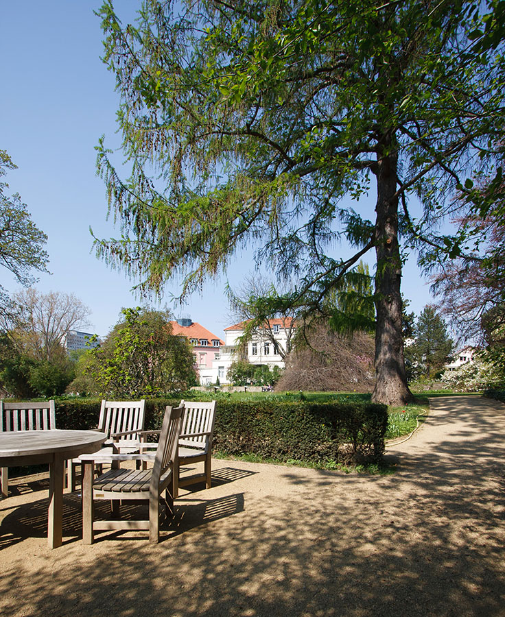 Botanischer Garten Braunschweig | Fotografie Sándor Kotyrba